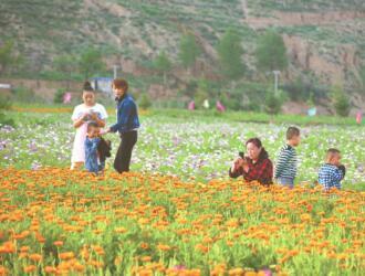 青海:推动新时代旅游高质量发展