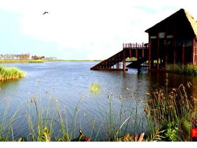 <上海崇明岛1日游>明珠湖,西沙国家湿地公园